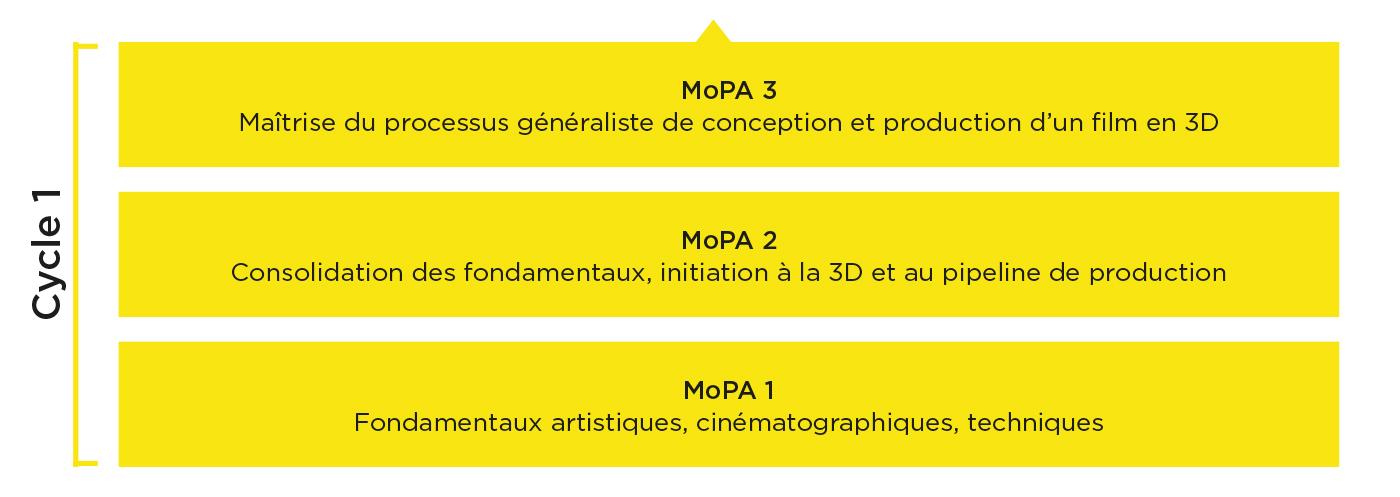 Schéma des études Cycle 1 - MoPA